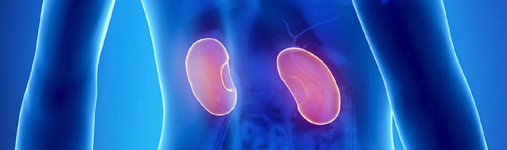 pedras de ureter