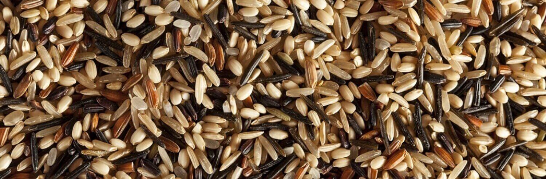 o que torna os grãos integrais mais benéficos que os grãos refinados
