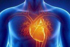 é cardiomiopatia sempre hereditária