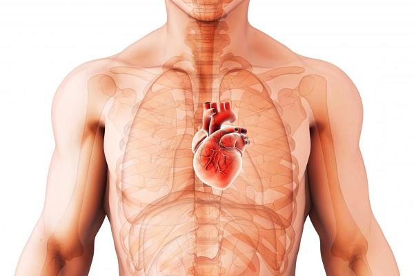 Cardiomiopatia dilatada pode ir embora em seu próprio?