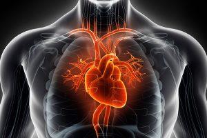 Cirurgia de vazamento de válvula cardíaca e exercício