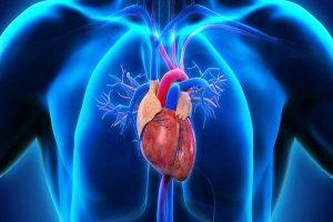 Como você conserta uma válvula de coração com vazamento?