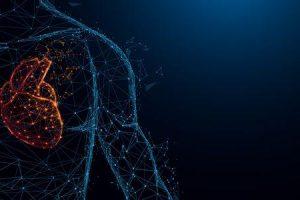 Diretrizes de tratamento de cardiomiopatia ventricular direita arritmogênica