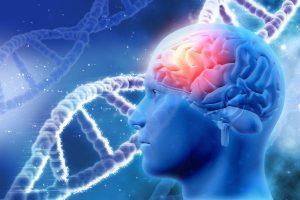 O Parkinson pode ser genético?