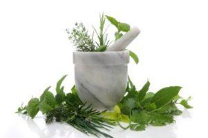 O que é Naturopathic Medicine ou Naturopathy, Conheça seus usos, Ideologia, Benefícios, Prática