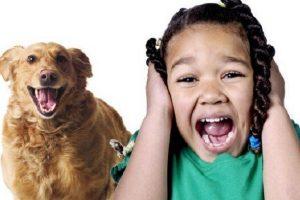 O que é zoofobia ou fobia animal e como superá-lo?