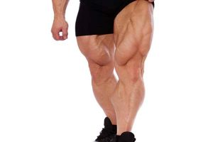 Rasgo Muscular