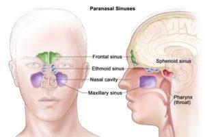 Tratamento para a Deficiência Imune Variável Comum