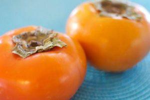 benefícios de saúde e efeitos colaterais da fruta caqui