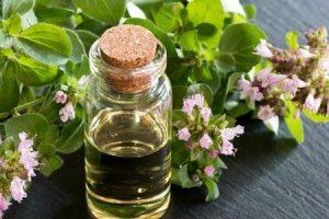 benefícios de saúde e medicamentos do óleo de orégano e seus efeitos colaterais