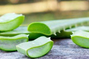benefícios de saúde surpreendentes da pele de gel de aloe vera