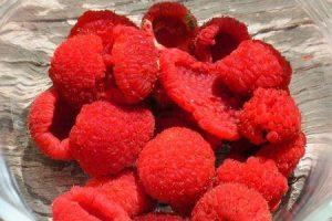 benefícios de saúde surpreendentes de thimbleberries