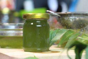 benefícios do óleo de nim