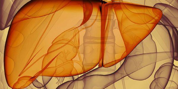 colangite esclerosante primária psc