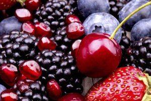 como polifenóis em frutas e plantas beneficiam a saúde humana