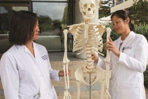 desordens ósseas metabólicas