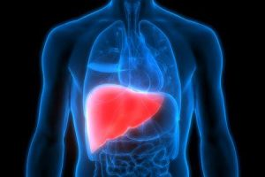 doença hepática na gravidez