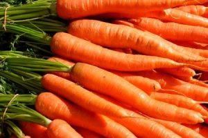 fazer cenouras causam gás