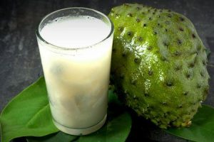 fruta guanabana ou graviola