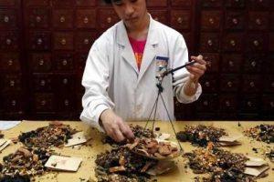medicina tradicional chinesa para a fertilidade como as ervas chinesas estimulam a fertilidade
