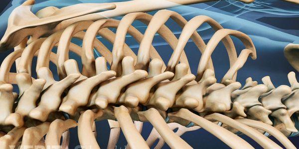o que é câncer das vértebras