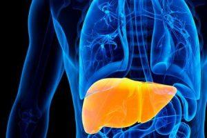 o que é fígado aumentado ou hepatomegalia