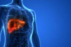 o que é insuficiência hepática aguda e como é tratada