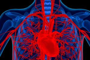 o que é uma raiz da aorta aumentada