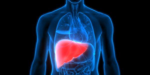 o que acontece com o corpo durante uma insuficiência hepática