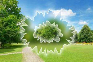 o que pode causar linhas onduladas na visão e como é tratado
