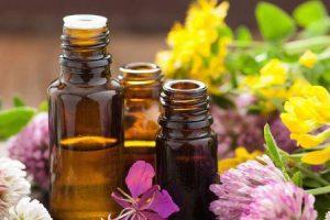 os melhores óleos essenciais para a sua saúde