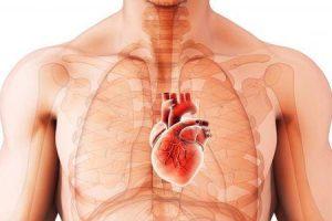 pode cardiomiopatia ir embora por conta própria