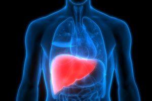 quanto tempo você pode viver com cirrose hepática