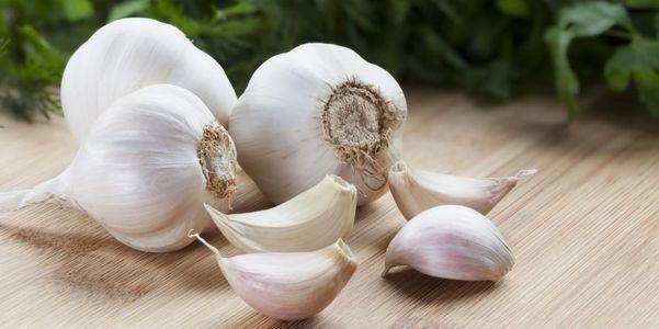 tipos de colesterol sua causa sintomas tratamento hipolipemiantes drogas