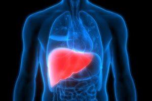 tipos de infecção do fígado infecção viral do fígado e não viral