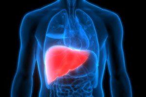 você pode curar a cirrose do fígado