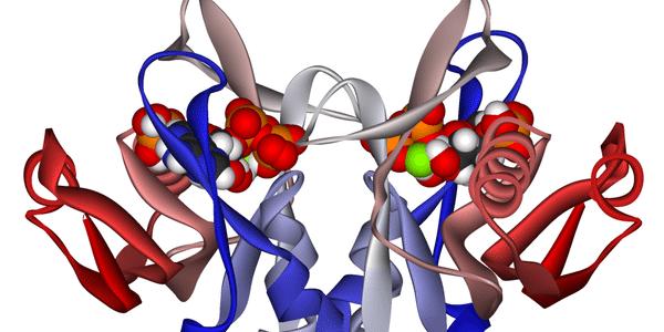 adenina fosforribosiltransferase ou deficiência