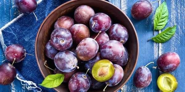 benefícios de saúde e efeitos colaterais de ameixas secas ou ameixas secas