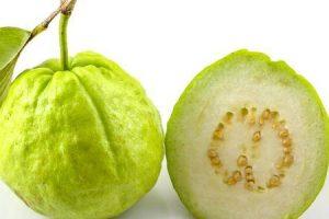 benefícios surpreendentes para a saúde da fruta feijoa