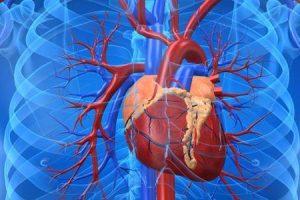 cardiomiopatia dominante ou recessiva