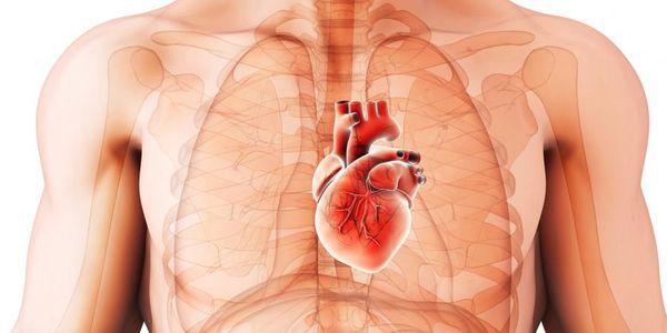causas de cardiomiopatia hipertrófica e seu tratamento