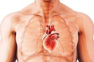 como você conserta cardiomiopatia