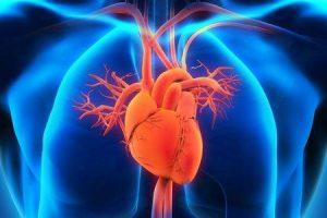 como você evita a estenose da válvula aórtica