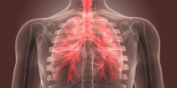 dor no peito causada por bronquite bacteriana