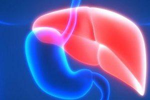 esteato-hepatite não alcoólica ou síndrome de nash