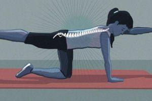 exercícios de estabilização lombar