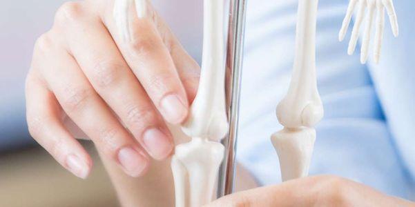 função da medula óssea e o que acontece se ele parar de funcionar