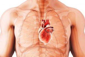 medicamentos que são contra-indicados na cardiomiopatia hipertrófica