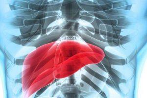 o que é um abscesso hepático e como é tratado