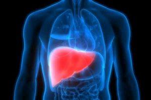 o seu fígado pode regenerar se você tiver cirrose